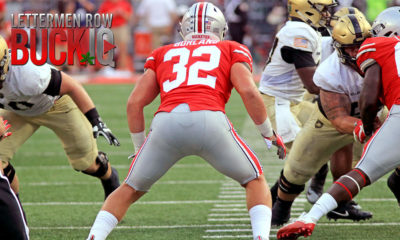 Ohio State-Tuf Borland-Ohio State Buckeyes-Ohio State football-linebacker